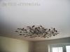 Натяжной потолок в квартире в гостиной