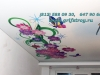 Натяжные потолки Арт-Печать